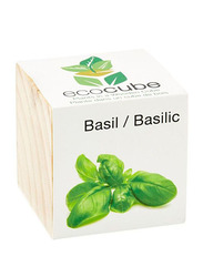 Feel Green Ecocube Basil Plants in Wooden Cube, Brown