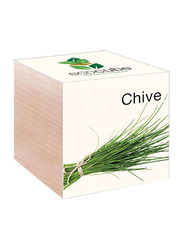 Feel Green Ecocube Chives Plants in Wooden Cube, Brown