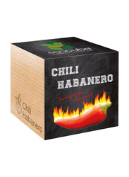 Feel Green Ecocube Chilli Habanero Plants in Wooden Cube, Brown