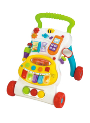 Winfun Grow with Me Musical Walker, Multicolour