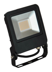 Radium LED Flood Light, 30W, FLLA1762, 6500K-Daylight, Black