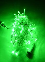 Salhiya Lighting Decorative LED Fairy String Tree Light, 10Meters, TDL100L, Green