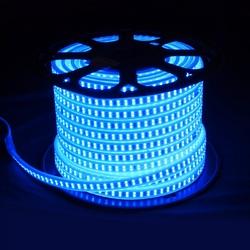 Salhiya Lighting 50 Meter High Quality LED Flexible Strip Light, Double line 180 LED/Meter and 13W/Meter, 5 Years Lifespan, OML2835, Blue
