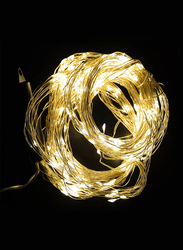 Salhiya Lighting 3-Meter Decorative Cluster 400 LED Light Chain, PL17975, Warm White
