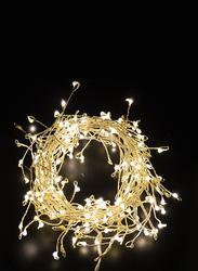 Salhiya Lighting 2-Meter Decorative Cluster 100 LED Light Chain, PL17637C, Cold White