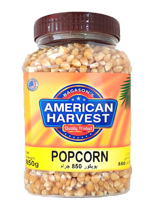 American Harvest Popcorn Kernels Jar, 850g
