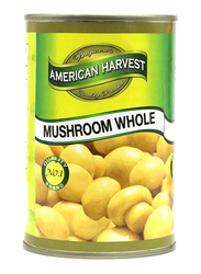 American Harvest Whole Mushroom, 400g