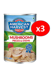 American Harvest Mushrooms Pieces and Stems, 3 Cans x 400g