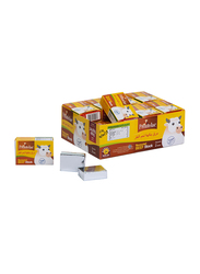 Promolac Beef Cube, 20g
