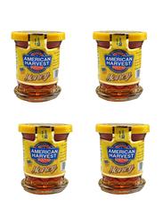 American Harvest Honey, 4 Pieces x 80gm