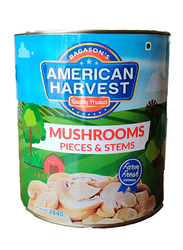 American Harvest Mushrooms Pieces and Stems, 2840g