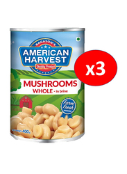 American Harvest Whole Mushrooms, 3 Cans x 400g