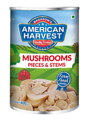 American Harvest Sliced Mushroom Pieces and Stems, 400g