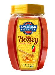 American Harvest Natural Honey Hexa Jar, 250g