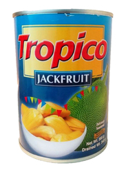 Tropico Yellow Jack Fruit, 565g