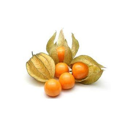 Physalis Colombia, 100 grams Packet