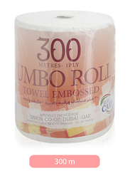Euro Care Jumbo Towel Embosses, 1 Roll x 300 Mtrs x 1 Ply