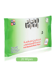 Union Anti Bacterial Moist Wipes, 20 Wipes