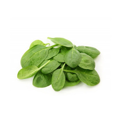 Baby Spinach Italy, 125 grams Packet