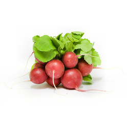 Red Radish Without Leaf Lebanon, 250 grams Packet