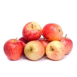 Apple Royal Gala Italy, 1.5 KG Packet
