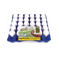 Abudhabi Large Eggs, 30 Eggs