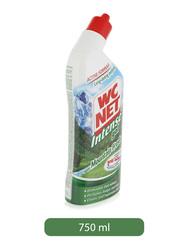 W.C Net Mountain Fresh Intense Gel Toilet Cleaner, 750ml