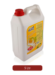 Union Lemon Dish Wash Liquid, 5 Liter