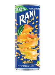 Rani Float Mango No Added Sugar Fruit Drink, 240ml