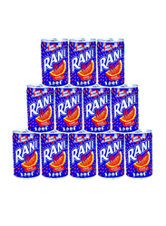 Rani Float Mango Fruit Drink with Real Fruit Pieces, 12 Cans x 150ml