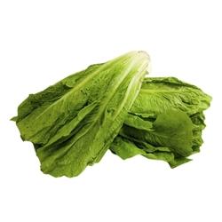 Lettuce Romaine, 300 grams