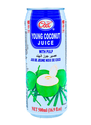 Ice Cool Young Coconut, 500ml