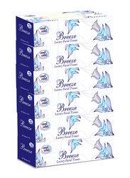 Cool & Cool Breeze Facial Tissues, 6 Boxes x 100 Sheets x 2 Ply