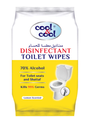 Cool & Cool Disinfectant Toilet Wipes, 20 Sheets