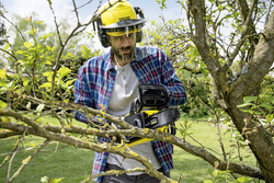 Karcher CNS 18-30 Battery Chainsaw, Black/Yellow