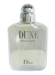 Dior Dune 100ml EDT for Men