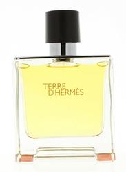 Hermes Terre d'Hermes 75ml EDP for Men