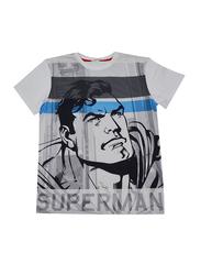 Lucas Warner Bros Superman Short Sleeve T-Shirt for Boys, Extra Large, Grey