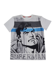 Lucas Warner Bros Superman Short Sleeve T-Shirt for Boys, Medium, Grey