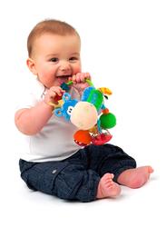 Playgro Clip Clop Activity, Multicolour