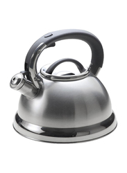 Arshia 3L Stainless Steel Kettle, SK128, Silver