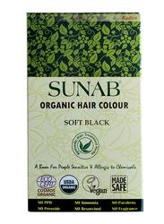 Radico Sunab Soft Black Powder 100% Leaf Powder 100g