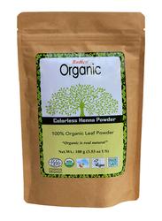 Radico Organic Colorless Henna Powder 100% Leaf Powder 100g