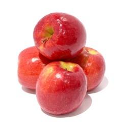 Apple Pink Lady (USA), 1 KG