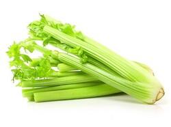 Celery, 1 KG