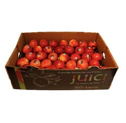 Apple Juici Fancy (USA) 12.5KG
