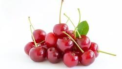 Cherry (USA), 8KG