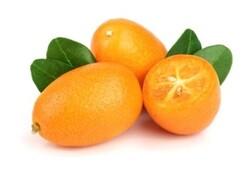 Kumquats (South Africa), 1 KG