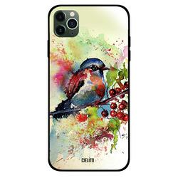 Cielito Apple iPhone 11 Pro Mobile Phone Back Cover, Impression Bird Art
