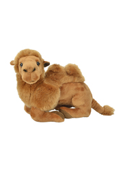 Nicotoy Lying Camel with Beans 23cm Soft Toy